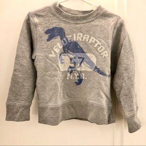 "Crewcuts Dinosaur Sweatshirt T2 *a+ condition"""